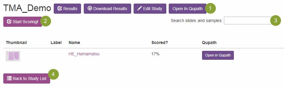 Advanced - Slide Score Help